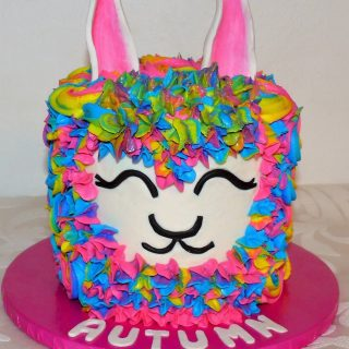 Rainbow Llama Cake by Katy's Kitchen in Cedar Rapids Iowa